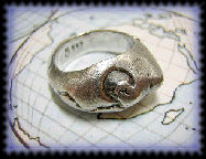 llllllooo_works_ring1_others1003051.jpg