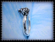 llllllooo_works_ring1_others1003059.jpg